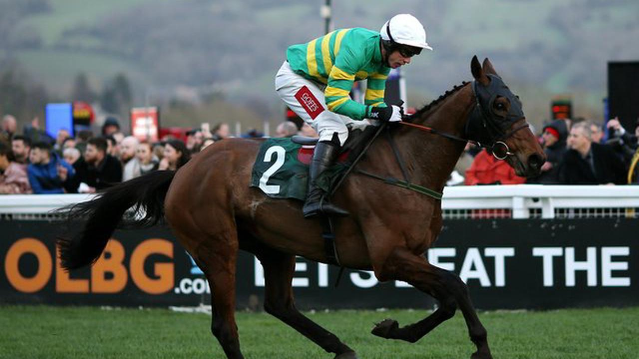 Who will win the Grand National? Every horse rated