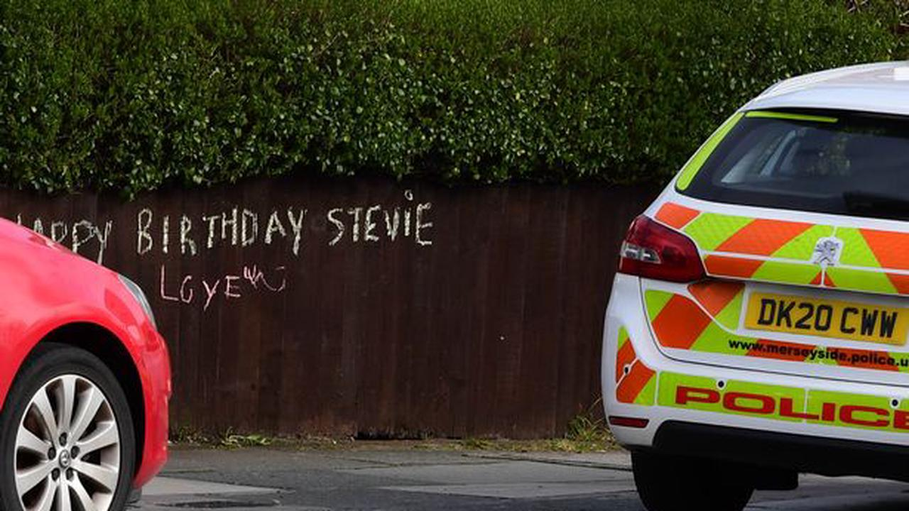 Police arrest man, 20, after boy, 12, was stabbed while playing on bouncy castle in front of terrified children at his sister's eighth birthday party and say attack 'was not random'