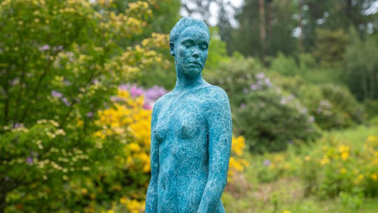 13 pictures showing the new sculpture park at Leonardslee Gardens