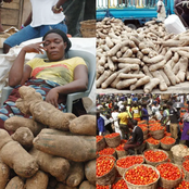 Southerners Should Remain Hungry Let Our Food Spoil, No Food Will Pass - Northern Traders