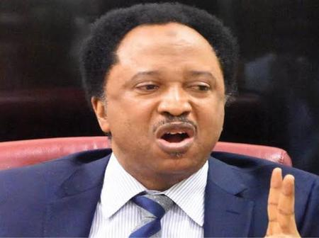 Read What Shehu Sani Said After Resident Doctors Commenced Nationwide Strike.