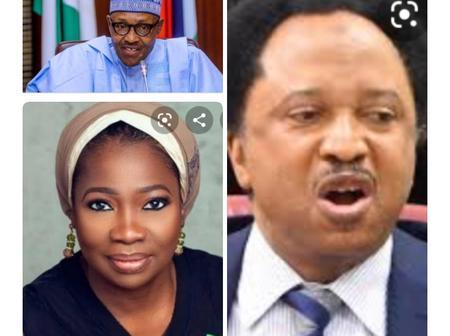 I Wanted Abike Dabiri To Appeal To Diasporans Not To Embarrass President Buhari- Senator Shehu Sani.