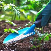 How To Start A Lucrative Organic Fertilizer Production Business In Nigeria