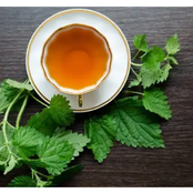 Here's what Nettle Tea do to your body