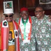Opinion: Check Out Peter Obi Gravest Misgiving Against Ndi Anambra.