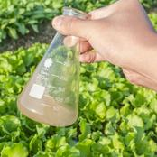 Plant tissue analysis