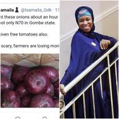 After a Man said he bought cheap onion and was given Free Tomatoes in Gombe, See what Aisha told him