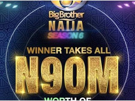 Big Brother Naija: A Period Nigerian Politicians May Look Forward To