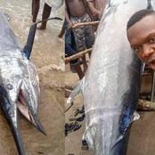 Man Allegedly Caught Fish Worth $2.6million Dollars And Ate It With His Village People