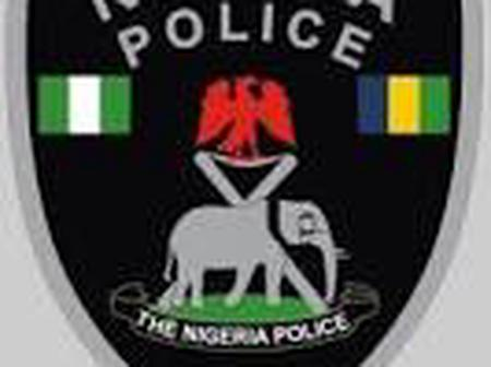 Nigerian Police Force, will not allow another violent End SARS Protest