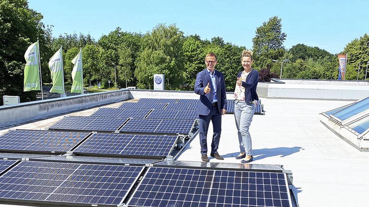 Einsatz für die Natur: Das Autohaus Kuhn+Witte setzt viele Projekte für den Umweltschutz um - Buchholz