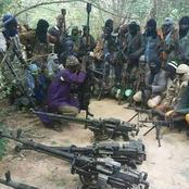 Bandits kidnap no less than 300 students in Zamfara