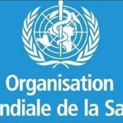 L'OMS effraie encore l'Afrique : le paludisme tuera plus de personnes que le coronavirus