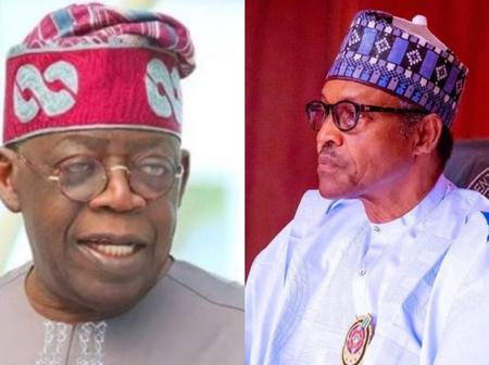 Reactions As Tinubu Advises Buhari To Recruit 50 Million Youths To Fight Boko Haram, Bandits