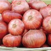 Food Blockade: How To Preserve Onions To Last Up To 8 Months