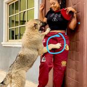 Checkout What This Nollywood Actress Was Doing With Her Dog That Got People Talking. (Photos)
