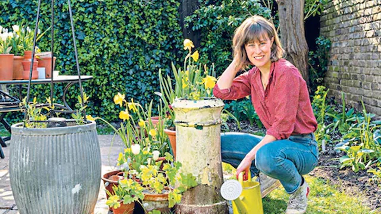 Five of the best garden pots for summer