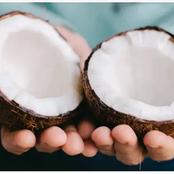 See how you can end poverty and break generational curses using coconuts