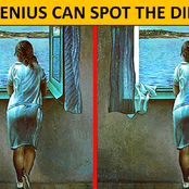 Only The Most Attentive People Will Be Able To Spot The Differences In These Pictures