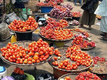 16 States in Nigeria to Face Acute Food Crisis as we approach Yuletide