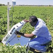 Overview of Garden vs. Field-Scale Irrigation