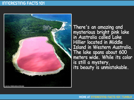 Have you seen the photos of this pink lake in Australia?
