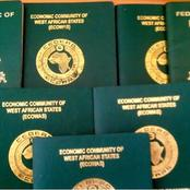 Check Out huge number of Nigerians that processed passports and applied for Visa in 2020.