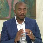 'ANC Must Admit Defeat' Says Mmusi Maimane As He Sends Strong Warning To DA