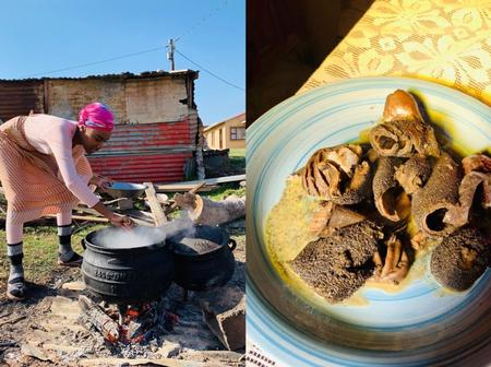 Universe Zozibini Tunzi shows off her unknown Cooking talent – Photos