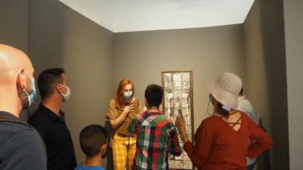 Visite commentée de l'exposition Lisières de Vincent Chevillon : Visite guidée à Strasbourg