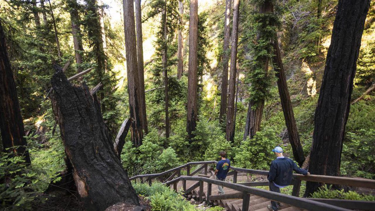 California 4th graders will have free access to 19 state parks - Opera News