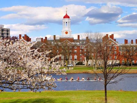 Top 11 Universities that produce Highest Number of Billionaires in the World