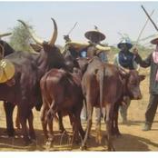 Oyo herdsmen crisis: Fulani leaders beg for forgiveness.