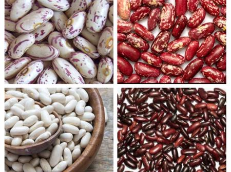 What You Are Missing By Not Including Kidney Beans In Your Diet