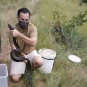 When a snake catcher from Durban saves a python, he discovers a huge surprise.