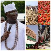 Southerners Spend N8 Billion Daily On Cow Consumption, North Not Doing Us A Favour -Gani Adams
