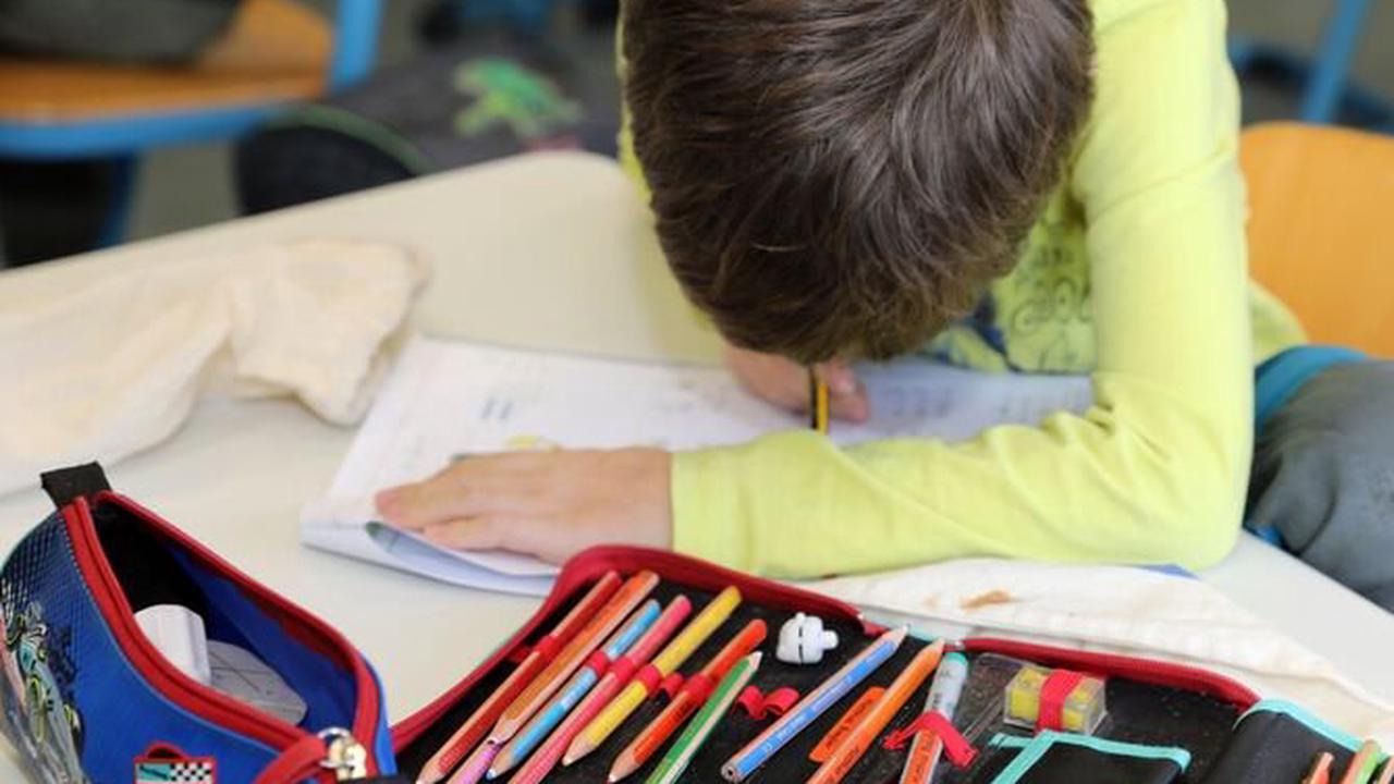 Lernbegleiter gesucht: Ehrenamtliche bieten Nachhilfe für Schülerin Kernen an