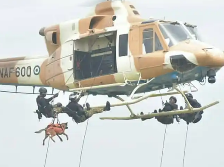 Photos Of Nigerian Soldiers Using Dogs For Military Operations