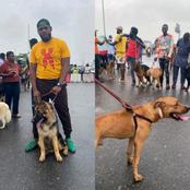 "Opinion: Those Using Foreign Dogs To Protest For ""END SARS"" Should Be Jailed And Prosecuted"