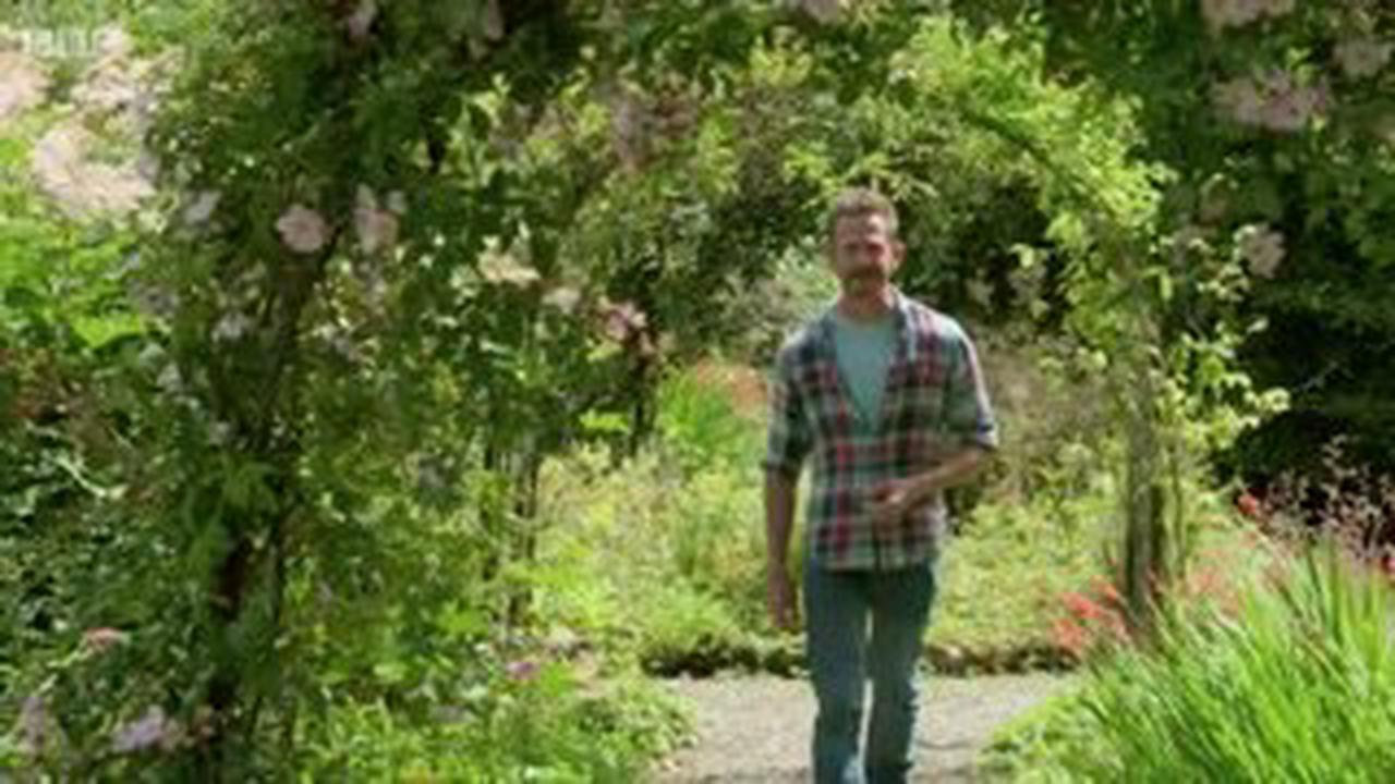 Gardener livid as workmen leave 23-feet scorch mark along hedge he's tended for 20 years
