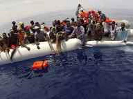 Irregular Migration, Fugitive Investigation and Extradition