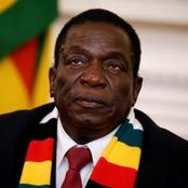 Here is what will happen regarding some Zimbabwean land borders after President Mnangagwa's address