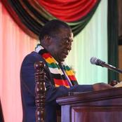 Opinion - Mugabe Was Right When he Said he Had no One to Nominate as a Leader of Zanu Pf