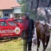 Don't Start A War You Can't Win, People React As Amotekun Begins Arrest Of Underage Herdsmen