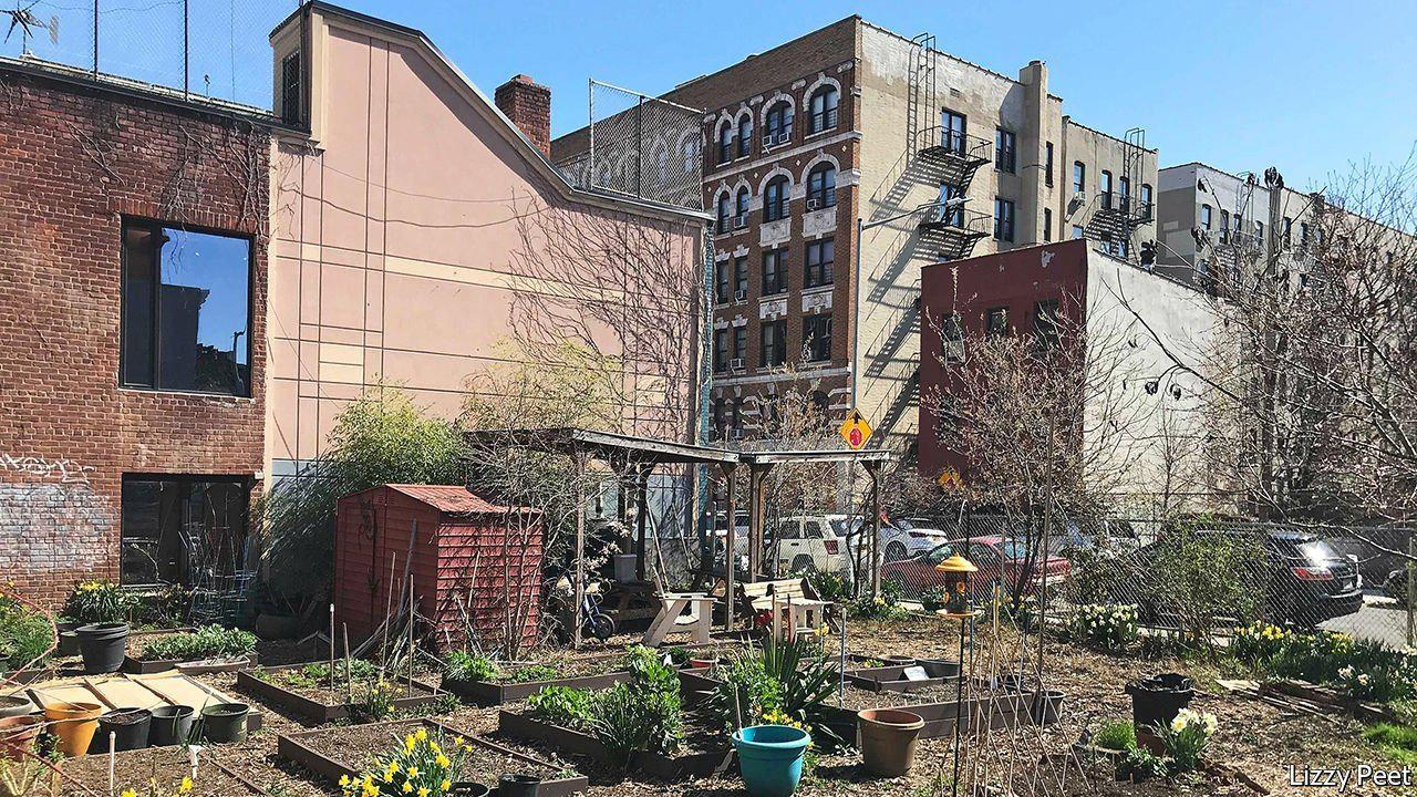 A blooming future for New York's community gardens