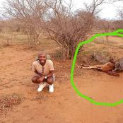 This man took pictures near a wild animal, see what happened next!