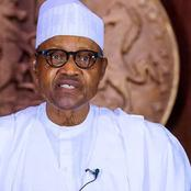 Shoot anyone you see with AK-47 -President Buhari tells troops