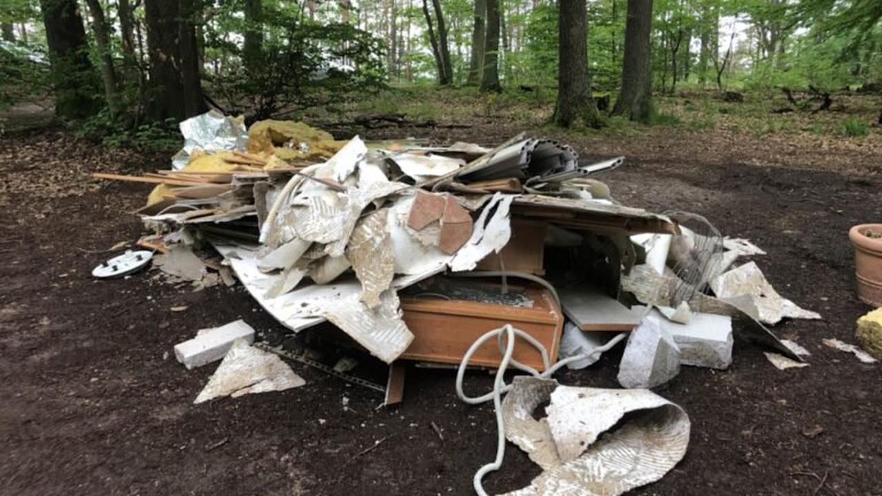 Müll im Wald illegal entsorgt