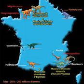 Le Titan des garrigues, un nouveau dinosaure découvert en France
