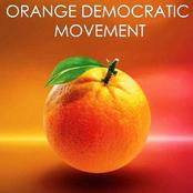 Opinion: Why ODM Is Slowly Turning To A Village Party